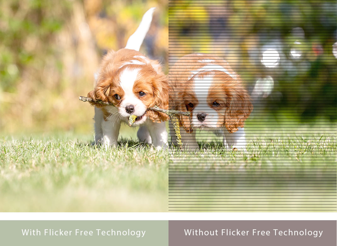 Flicker-free Technology